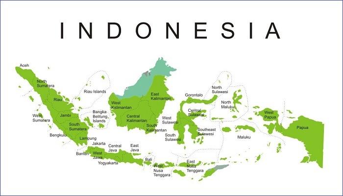 Kursus membuat website online seluruh Indonesia