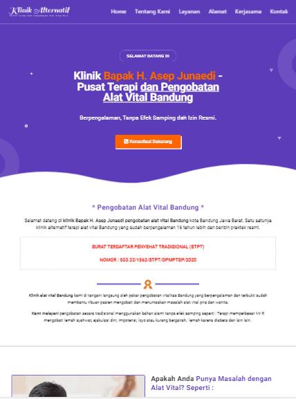demo jasa pembuatan web landing page